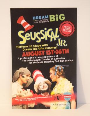 Dream Big Sues Postcard